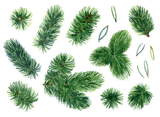 Set of Christmas tree branches