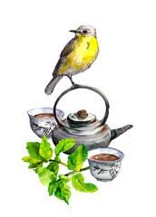 Mint tea, teapot, cups and bird. Watercolor