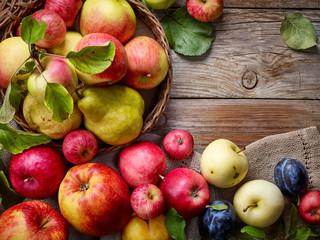 beautiful autumn fruits