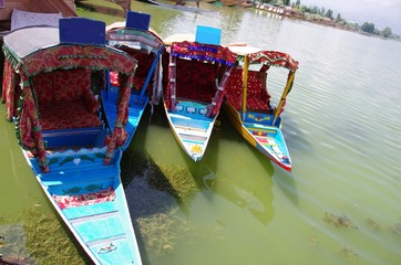 Shikaras in Srinagar in Kashmir, India