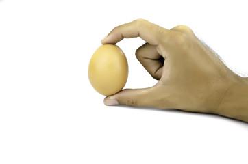 Hen egg isolate photo on white background