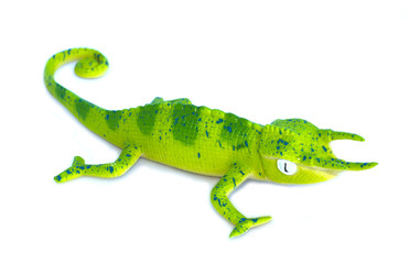 Lizard toy on white background.
