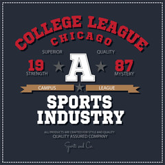 Sport athletic champions college league Chicago logo emblem. Vector Graphics and typography t-shirt design for apparel.