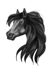 Black arabian horse head symbol