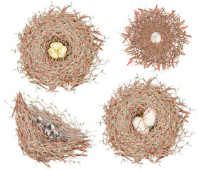 Set, collection of the watercolor bird nests with eggs, hand drawn isolated on a white background