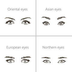 set of different types of eyes.