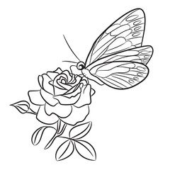 Butterfly on blooming rose, small bud and leaf. Black easy drawing line art tattoo, pen ink graphic design, insect outline motif