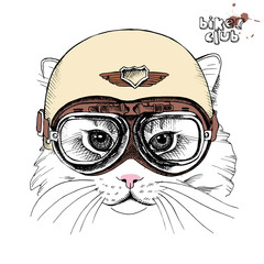Portrait of cat in a retro helmet. Vector illustration.