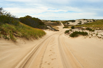 Road in sand dunes at Cape Cod