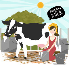 Milking of a cow.vector/Illustration