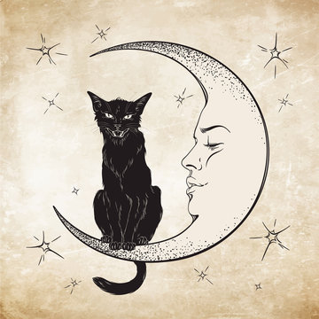 Black cat sitting on the moon. Wiccan familiar spirit vector