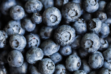 Blueberry closeup macro background