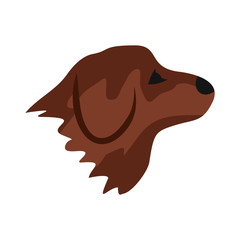 Retriever dog icon in flat style isolated on white background. Animals symbol
