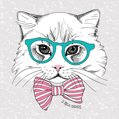 Image portrait cat in the glasses and with tie. Vector illustration.