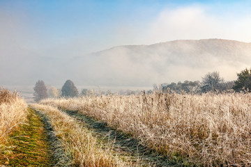 rural path through hillside meadow with frozen grass in Carpathian mountains in morning fog at sunrise