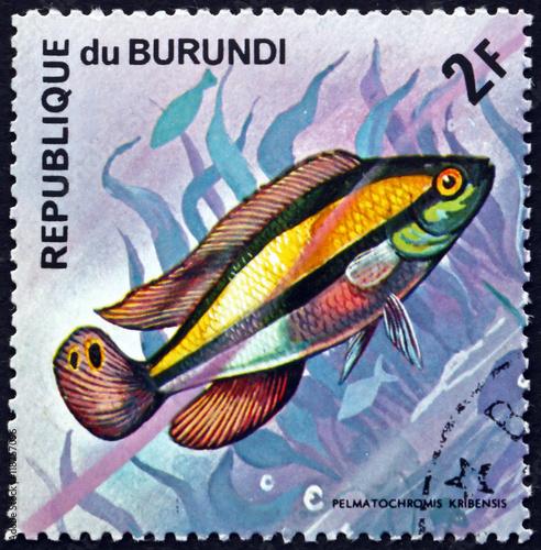 """""""Postage Stamp Burundi 1974 Kribensis, Freshwater Fish"""