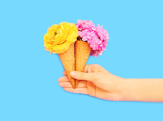 Hand holding two ice cream cone with flowers over blue backgroun
