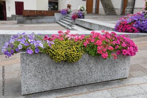 Decorazione Vasi Da Giardino : Bonsai sui vasi da fiori blu per la decorazione fotografia stock
