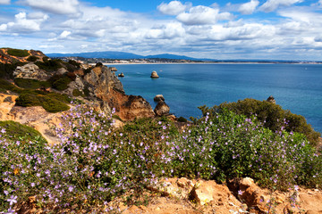 Wall Mural - Coastline Algarve with flowers in the spring. Portugal, near Lagos