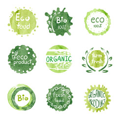 Watercolor green Eco food labels set. Vector collection of hand drawn Bio signs.