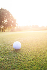 Golf ball on green grass in golf course
