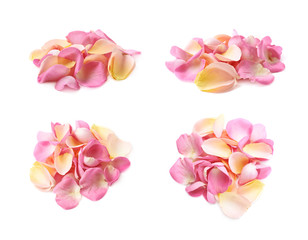 Pile of multiple rose petals