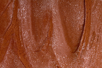 Chocolate ice cream. Closeup photo.