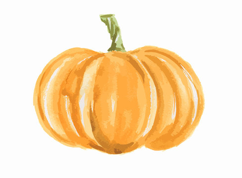 Isolated watercolor pumpkin. Fresh and healthy vegetable with vitamins. Farm vegetables.