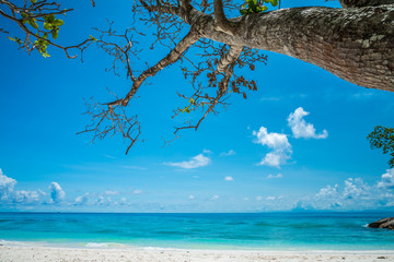 Beautiful tropical island white sand beach summer holiday - Travel summer vacation concept.