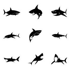 Shark vector set.