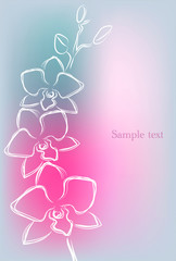 Background with orchid in beautiful gentle colors, vector illustration