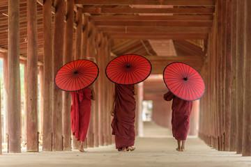Burnese Buddhist novices