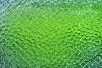 ガラスに映った緑