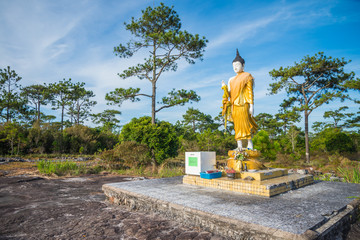 Buddha statue in public national park