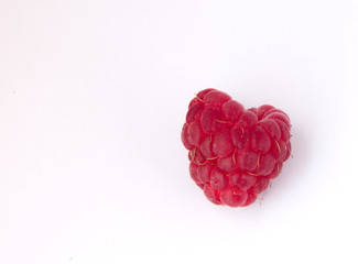 one raspberry on the white background close up