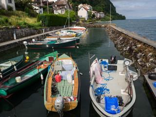 Meillerie en Thonon les Bains FranciaOLYMPUS DIGITAL CAMERA Fototapete
