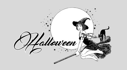 Young halloween witch flying on broom vector illustration