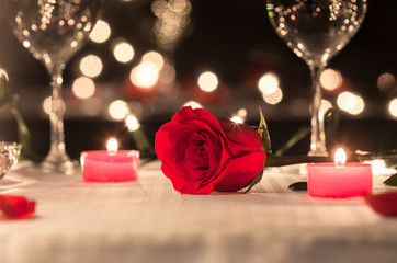 Beautiful single rose in a romantic dinning setting. First date.
