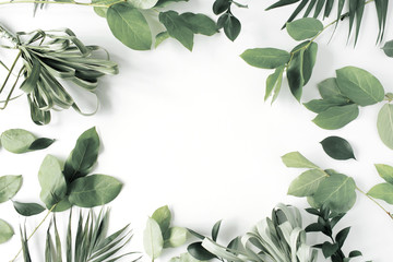 frame with flowers, branches, leaves and petals isolated on white background. flat lay, overhead view