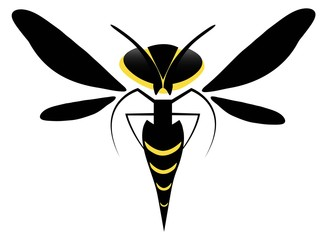 Wasp Bee Vector