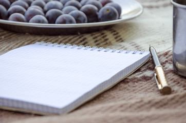 Open empty notebook, pen and berry plum. Selective focus, space for text.