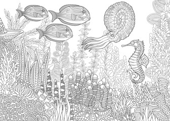 Stylized composition of tropical fish, seahorse, calamari (squid), underwater seaweed, corals and starfish. Freehand sketch for adult anti stress coloring book page with doodle and zentangle elements.