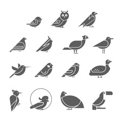 Vector bird icon set