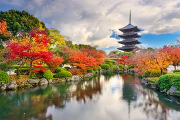 Toji Pagoda in Kyoto, Japan during autumn.
