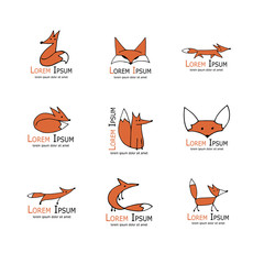 Fox icons, collection for your design