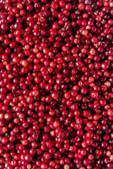 Raw cranberry