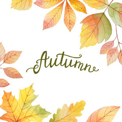 Autumn watercolor illustration with colored leaves and hand lettering.