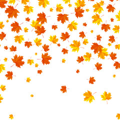 Falling autumn leaves background.