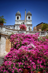 Spanish Steps in Rome with church and beautiful flowers. Piazza di Spagna Italy.