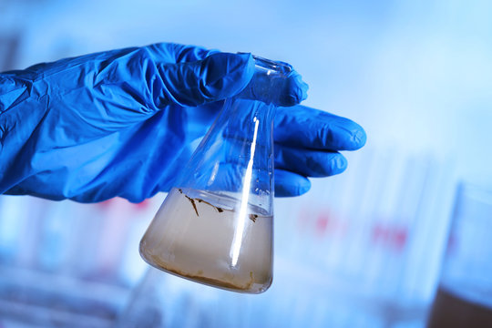 Hand in glove holding flask with contaminated water in laboratory closeup